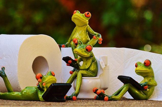 frog-1037257_640.jpg