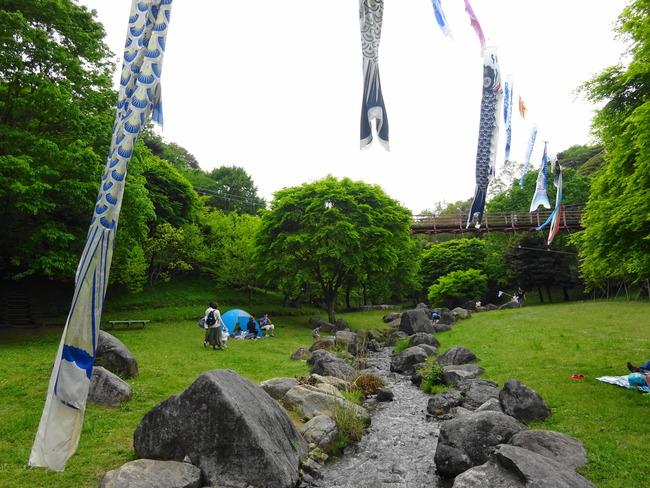 涸沼自然公園|子供が喜ぶ川遊び!キャンプもできる湖畔の公園 - いばらじお♪