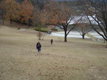 笠間芸術の森公園 の野外コンサート会場