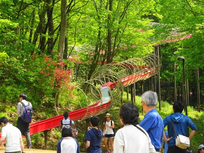 笠間芸術の森公園 新緑の季節は緑が綺麗