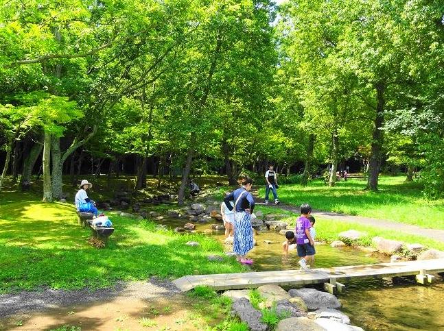 水戸で川遊びが気持ちイイ!千波湖の「せせらぎ広場」 - いばらじお♪