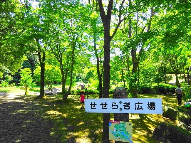超気持ちいい!茨城の川遊び&水遊びスポット6選 - いばらじお♪