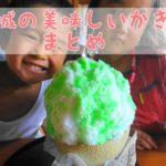 茨城 かき氷