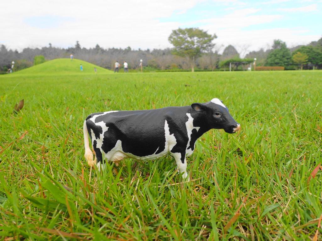 牛のフィギュアを置いてみた。