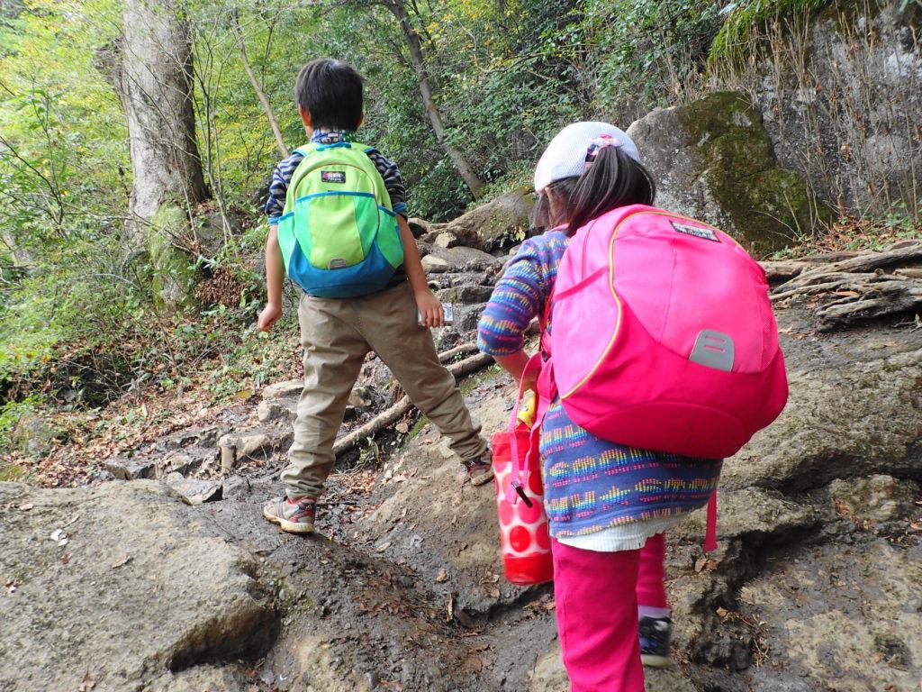 筑波山 子ども登山 道が険しくなってきた
