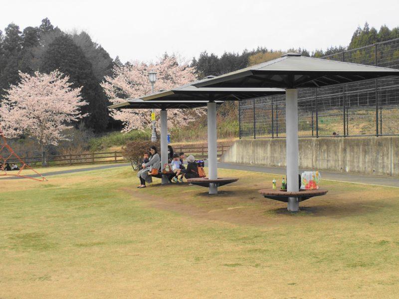 笠間市総合公園 ベンチ