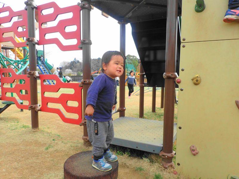 笠間市総合公園 遊具で遊ぶ子1