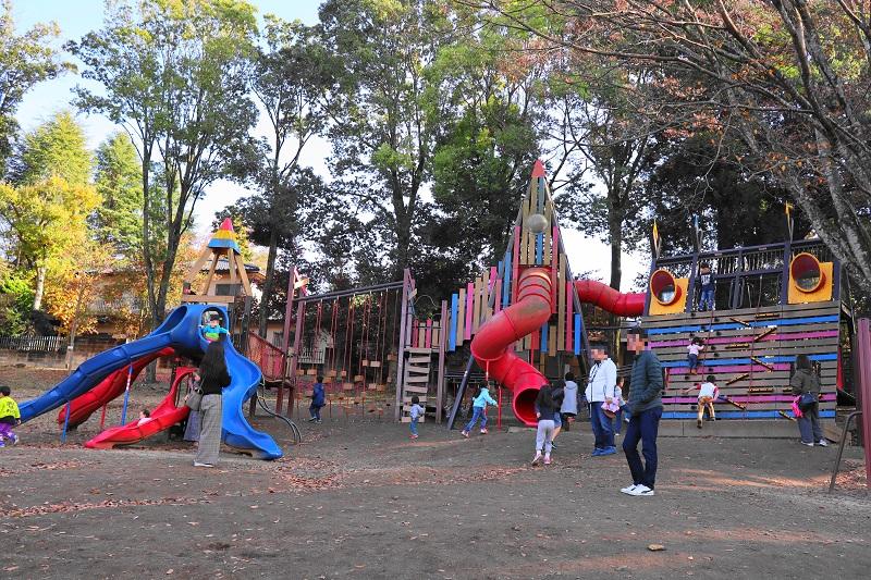 「千波公園少年の森 」の遊具